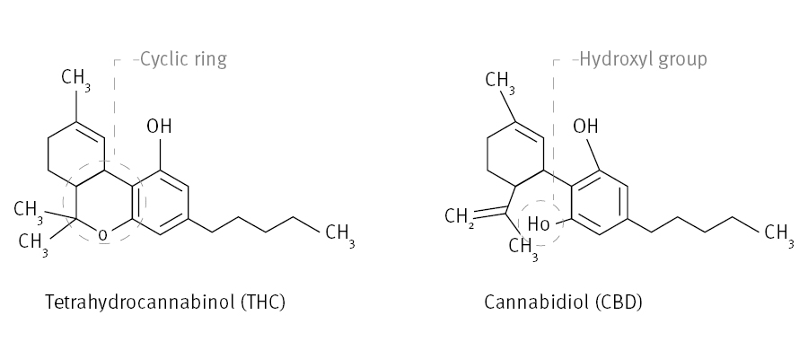 BIOMARK002.67 - in text structures THC vs CBD